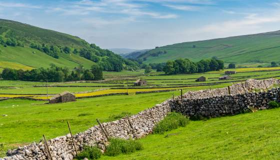 Green grassy hills and stone walls in Yorkshire